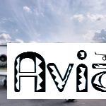 Авиаброкеры
