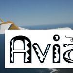 Самолет Falcon 50, основные технические данные, компоновки салона