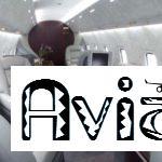 Авиакомпании. Заказ самолетов в российских и иностранных авиакомпаниях